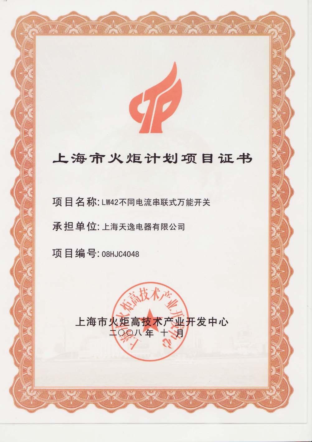 上海市火炬计划项目(万转)